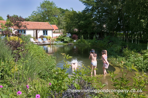 Norfolk magazine the swimming pond company ltd for Swimming pools that look like ponds