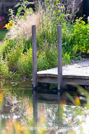 The Swimming Pond Company Also Designs And Builds Other Garden Elements,  Which Include Traditional And Contemporary Garden Design, Courtyard  Gardens, ...