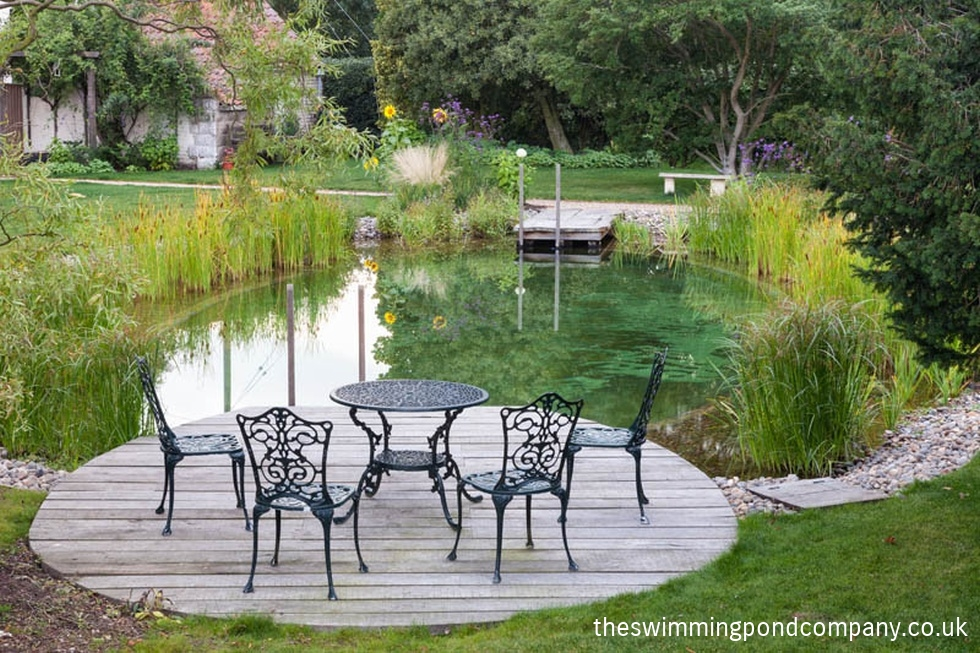 The concept the swimming pond company ltd for Pond swimming pool