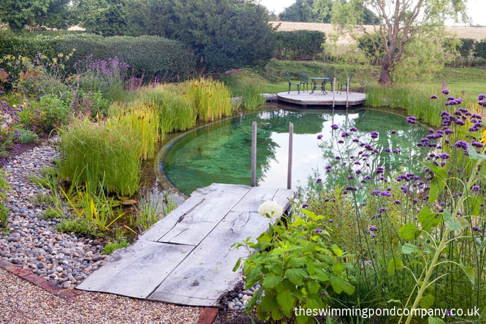 Swimming pond construction the swimming pond company ltd for Making a natural pond