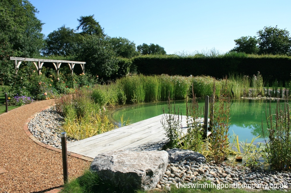 how to keep a pond clear naturally