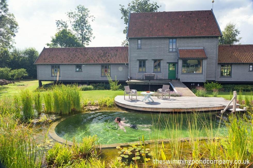Gallery The Swimming Pond Company Ltd