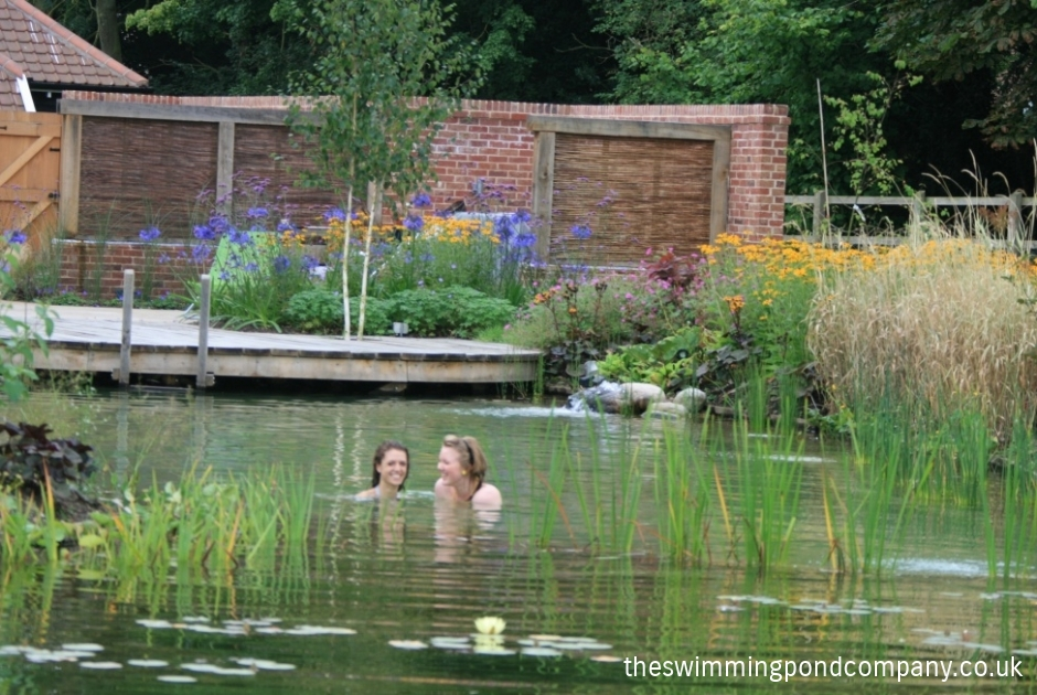 Traditional homes interiors the swimming pond company ltd - The pond house nature above all ...
