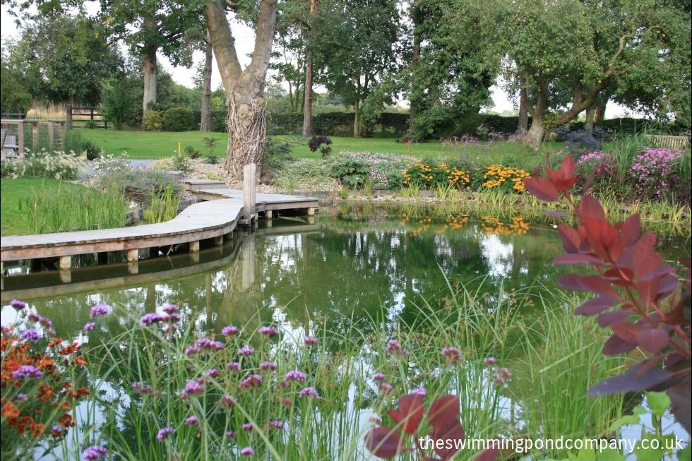 Denton suffolk the swimming pond company ltd - Denton swimming pool denton manchester ...